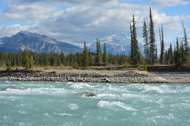 Glacial Stream, Jasper National Park, Alberta, Canada