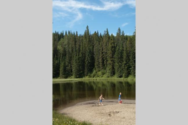 Home Time, William A Switzer Provincial Park, Alberta, Canada