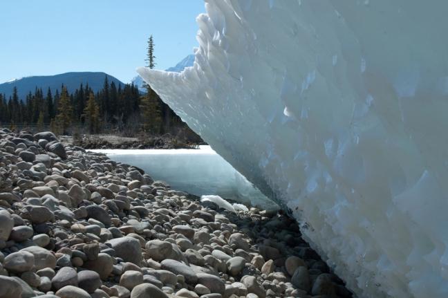 Spring Melt, Jasper National Park, Alberta, Canada