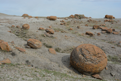 Huge red boulders are scattered through the coulee.